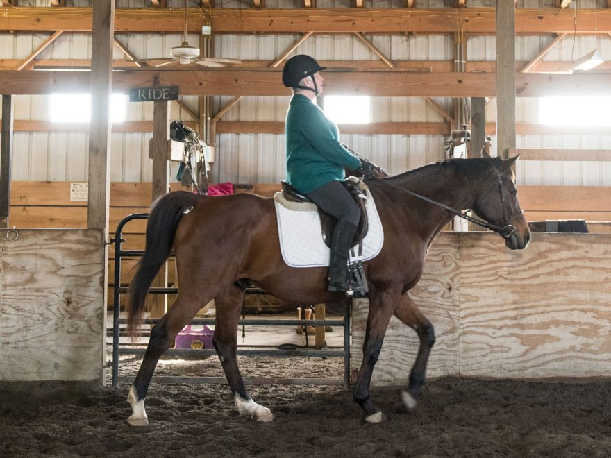 Blind Ambition | Using Horseback Riding Therapy for Those with Special Cognitive Needs